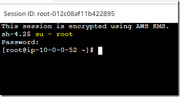 steps to login into EC2 Linux Instance without SSH key pair